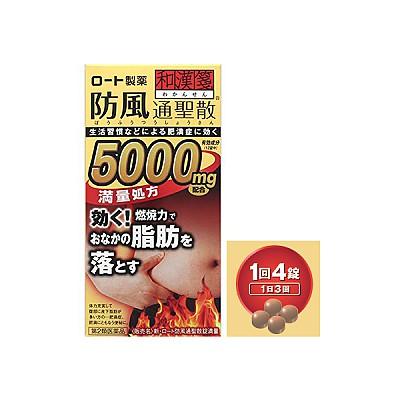 신·로토 방풍통성산정만량 5000mg